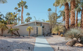 Picture palm trees, the door, track, structure, PALM SPRINGS DESERT HOUSES