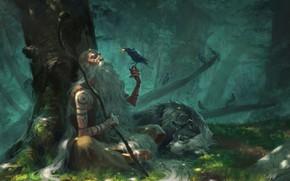 Picture fantasy, forest, trees, birds, man, tattoo, animal, wolf, stick, Druid, artwork, fantasy art, illustration, crows, …