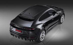 Picture Lamborghini, rear view, crossover, Urus, Novitec, 2019