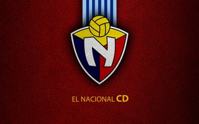 Picture wallpaper, sport, logo, football, The National