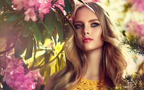 Picture leaves, the sun, flowers, branches, portrait, makeup, hairstyle, blonde, beauty, bokeh