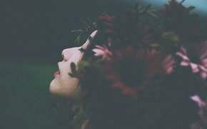 Picture girl, flowers, wreath