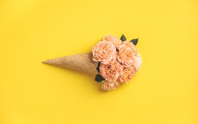 Picture yellow, background, roses, buds, horn, waffle