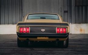 Picture Mustang, Ford, Boss 302, rear view, 1970, SpeedKore, RDJ