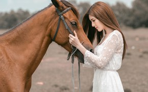 Picture look, face, girl, nature, face, background, each, horse, horse, portrait, hands, friendship, profile, brown hair, …