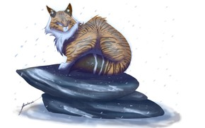 Picture snow, stone, art, white background, beast, lynx