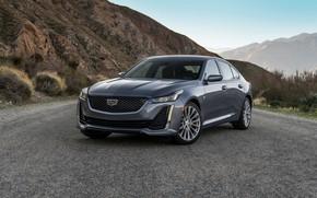 Picture mountains, grey, Cadillac, sedan, four-door, 2020, CT5