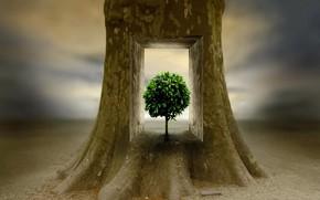 Picture tree, tree, inner world, inner peace, Ben Goossens