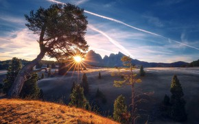 Picture mountains, tree, morning