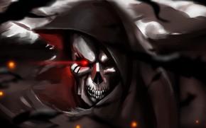 Picture skull, fantasy, art, skeleton, hood