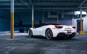 Picture white, sports car, rear view, Ferrari 488