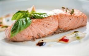 Picture sauce, salmon, Basil