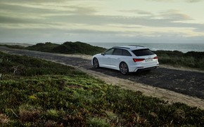 Picture white, Audi, vegetation, hybrid, universal, Audi A6, 2020, A6, A6 Avant, 55 TFSI and four