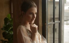 Picture look, face, hand, portrait, window, Damp Zergut, Anastasia Mayer