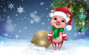 Picture smile, holiday, new year, humor, cute, pig, symbol of the year, pig