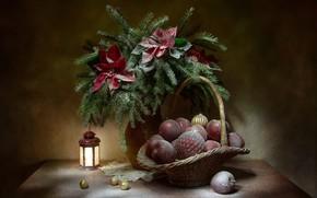 Picture balls, flowers, branches, holiday, balls, apples, Christmas, spruce, lantern, vase, fruit, still life, basket, napkin, …