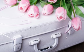 Picture bouquet, tulips, suitcase, vintage, Stolyevych Yuliya