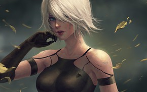 Picture Girl, Figure, Android, Art, Nier, Beautiful, Illustration, Characters, Automata, Game Art, NieR, NieR: Automata, Nier …