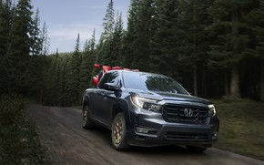 Picture road, forest, trees, Honda, pickup, 2020, Ridgeline, 2021