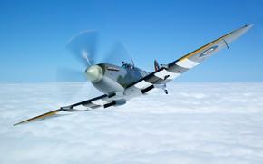Picture Fighter, Spitfire, Supermarine Spitfire, RAF, The Second World War