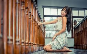 Picture girl, brunette, Asian, bokeh