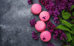 Picture wood, pink, flowers, lilac, macaroons, macaron, lilac, macaroon