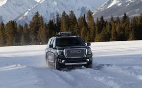 Picture field, GMC, SUV, Denali, Yukon, 2020