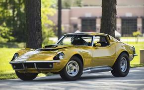 Picture Corvette, 1969, 454, Motion, Baldwin, Phase III