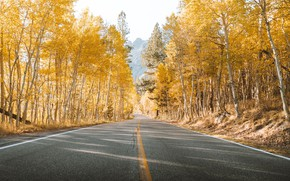 Picture road, trees, yellow, autumn, mountains, leaves, landscapes, asphalt, sunlight, 4k ultra hd background
