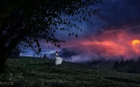 Picture grass, girl, trees, sunset, Genes Raz von Edler