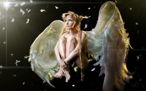 Picture girl, angel, feathers