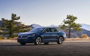 Picture trees, blue, Volkswagen, sedan, Passat, 2020, 2019, US Version