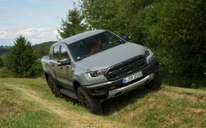 Picture grass, trees, grey, Ford, Raptor, pickup, Ranger, 2019