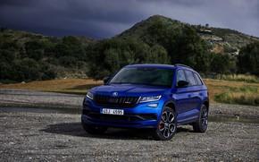 Picture blue, 2018, crossover, SUV, Skoda, Skoda, 2019, Kodiaq RS