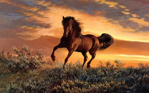 Picture field, the sky, clouds, sunset, nature, pose, horse, vegetation, horse, figure, picture, art, painting, the …