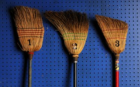 Picture background, wall, mops