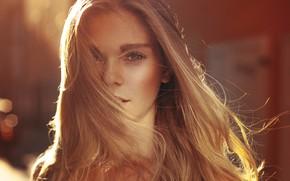 Picture look, girl, light, face, the wind, model, hair, beautiful, bokeh, Anne Hoffmann