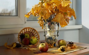 Picture autumn, leaves, the sun, branches, table, apples, window, vase, fruit, still life, basket, bumps, yellow