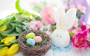 Picture holiday, eggs, Easter, Bunny