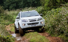 Picture grass, pickup, Isuzu, 2016, Arctic Trucks, D-Max, UK version, AT35