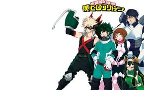 Picture characters, My Hero Academia, Boku No Hero Academy, My Hero Academy
