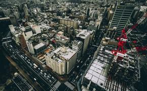 Picture the city, Tokyo, architecture