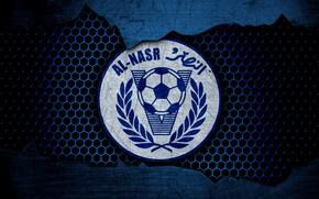 Picture wallpaper, sport, logo, football, Al-Nasr