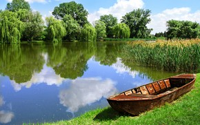 Picture forest, field, lake, beautiful landscape, boat