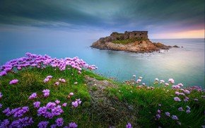 Picture sea, flowers, France, fortress, Wim Denijs