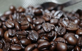 Picture coffee, a lot, coffee beans, bokeh