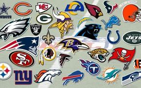 Picture logo, team, emblem, USA, NFL, The national football League
