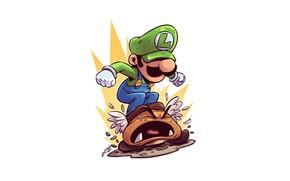 Picture Nintendo, Luigi, Derek Laufman