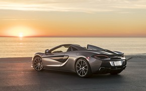 Picture sunset, coast, McLaren, supercar, rear view, 2018, Spider, 570S