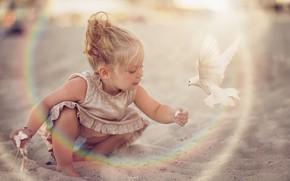 Picture sand, bird, dove, dress, girl, baby, child, Daniela Gabay